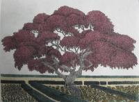 Red Maple Garden   (OUT OF PRINT)
