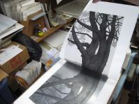 Printing an image of the Promontory Pine on the etching press.
