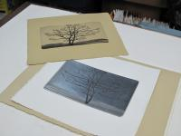 I just printed tree dance etching.